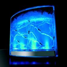 Antarium : un aquarium pour les fourmis avec lumière