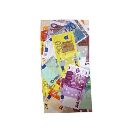 Drap de plage avec billets en euro