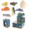 Oeuf à faire éclore vie marine