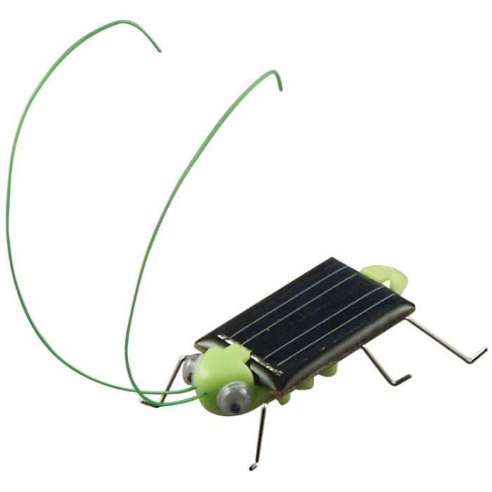 Sauterelle solaire